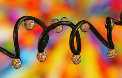 Dazzling colors (Lorraine1234) Tags: macro water colors droplets drops refraction waterdrops