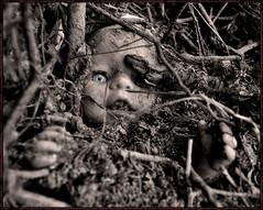 Reaching Out (Vide Cor Meum Images) Tags: bw abandoned sepia trash toy mono hands nikon doll reaching buried earth roots creepy soil morbid rubbish horror d750 dolly childs cor vide chucky meum markcoleman mac010665yahoocouk videcormeumimages markandrewcoleman