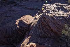 20160323-IMG_2418_DXO (dfwtinker) Tags: arizona water rock stone sunrise sand desert w page dfw whitaker glencanyondam pageaz kevinwhitaker dfwtinker ktwhitaker worthtexastraveljapan whitakerktwhitakerktwhitakervideomountainstamron