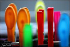Cogido con pinzas (Guijo Crdoba-fotografa) Tags: madrid espaa color spain bokeh nikond70s foco pinza profundidaddecampo selectivo nikonflickraward guijocordoba
