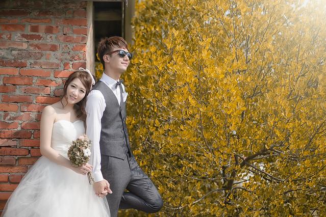 23892517674 77d49d6c0f z 台南婚紗景點推薦 森林系仙女的外拍景點
