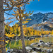2014 Enchantments View East-large-012-Enchantments 2014-1500x1000-72dpi