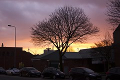 Sun rise (Dai Lygad) Tags: sky orange tree cars yellow wales sunrise photography photo flickr riverside image cymru cardiff picture stormy photograph caerdydd canton wellingtonst wellingtonstreet jeremysegrott dailygad