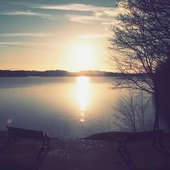 P1174801 (abory03) Tags: winter light sunset lake de soleil belgium belgique dam coucher olympus lacs paysage barrage omd charleroi em1 leau dheure