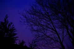 #Flow29jours J1 Ciel (Zihar Metyrakiel) Tags: sky ciel heurebleue bleuehours flow29jours