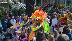 Inside Every Dragon, There is a Lady (BKHagar *Kim*) Tags: street carnival people colorful day neworleans crowd parade celebration napoleon nola mardigras prytania bkhagar kreweoftucksparade