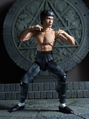 P1294610 (KVN Yeh) Tags: toy toys action figure brucelee bandai shfiguarts