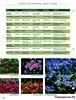 Комнатные и садовые растения от А до Я 50 15