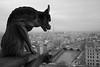 B & W-72.jpg (HLM Pictures) Tags: paris noiretblanc cathedrale chimere