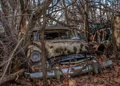 DSC08553.ARW-01 (juice95m3) Tags: abandoned rust vintagecar automobile junkyard oldcars classiccars