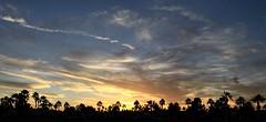 Palm Creek Sunset Feb 10 16 (Paddrick) Tags: sunset arizona sky panorama paddrick