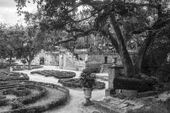 Vizcaya Magical Place to Walk BW (Don Thoreby) Tags: gardens florida miami walkways mansion fountains pathways coconutgrove biscaynebay miamiflorida villavizcaya overhangingtrees gardensteps renaissancearchitecture vizcayamuseumandgardens villavizcaya1914 jamesdeeringmansion