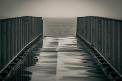 Afsluitdijk (MJ Klaver) Tags: bridge blackandwhite reflection monochrome fence zwartwit m42 ijsselmeer 135mm afsluitdijk lowangle sonnar czj carlzeissjena primelens oldlens ausjena manualfocuslens carlzeissjenasonnar135mmf35 twittertuesday ddrlens carlzeissjenasonnar135mmf35mcred