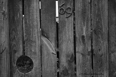 Soixante neuf. (MAMF photography.) Tags: wood uk greatbritain england blackandwhite bw art monochrome photography blackwhite google nikon flickr noir arty noiretblanc zwartwit unitedkingdom britain yorkshire negro gb upnorth zwart pretoebranco schwarz biancoenero westyorkshire greatphoto googleimages northernengland enblancoynegro zwartenwit greatphotographers mamf inbiancoenero soixanteneuf schwarzundweis nikond7100 mamfphotography