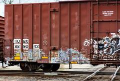 (o texano) Tags: bench graffiti texas houston trains worms freights debt a2m benching adikts