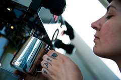 Current-E-Formula-E-Long-Beach-2016-HR-Marta-Rovatti-Studihrad-_MGR9481