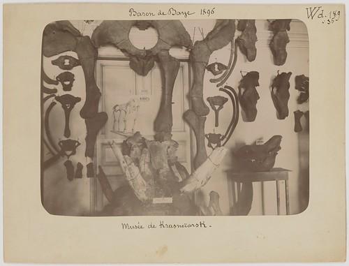1896. Baron de Baye. 58 phot. BnF (43) ©  Library ABB 2013