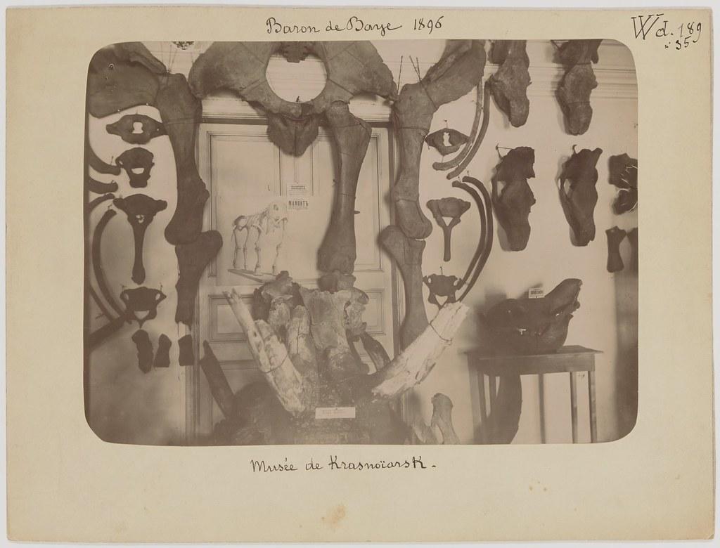 фото: 1896. Baron de Baye. 58 phot. BnF (43)