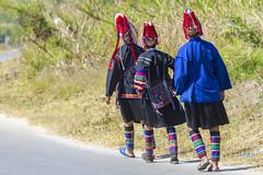 ChiangRai_9333 (JCS75) Tags: road thailand photography women asia chiangrai hilltribe akha colorimage