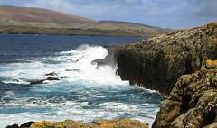 Sumburgh Coastline (falkirkbairn) Tags: shetland sumburgh