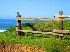Marin Headlands March 26, 2016 (rudyg39) Tags: ocean sanfrancisco beach sausalito marinheadlands rodeobeach