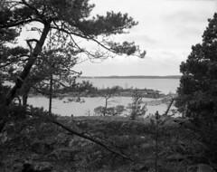 2016-April-24th_Porkkalanniemi_Graflex-Ektar_008 (Tatu Korhonen) Tags: finland fomapan100 kirkkonummi porkkala ektar35100mm adoxatomal49 graflex6x7rollfilmback fromkodakmedalist