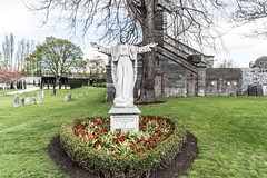 ARBOUR HILL CEMETERY [RESTING PLACE OF 14 EXECUTED 1916 RISING LEADERS]-115412 (infomatique) Tags: cemetery military graves prison irishhistory kilmainham 1916 easterrising arbourhill williammurphy oldgraves infomatique zozimuz leadersofthe1916rising