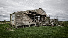 the old wool shed (dcysurfer / Dave Young) Tags: 169 abandoned building canoneos6d collapse collapsed dilapidated ef1635mmf4lisusm farm grass ihaia newzealand paddock powerlines pylons shed wooden woolshed ccby40 dcysurfer