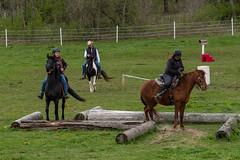 DSCF0337.jpg (Ed Traywick) Tags: horses horse leo robyn obstacles horseclinic