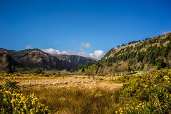 Glendalough (Ailís Ní hÉgeartaigh) Tags: world flowers blue ireland wild lake mountains color colour green nature water yellow clouds zeiss landscape countryside spring scenery colorful europe earth sony sunny bluesky valley colourful wicklow za a7 gorse 2016 sonya7