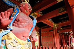 Rinnoji Taiyuin I (Douguerreotype) Tags: red face statue japan temple gate shrine buddhist nikko