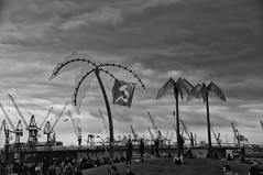 ParkFiction (RadarO´Reilly) Tags: bw blackwhite harbour hamburg flags cranes palmtrees sw hafen stpauli palmen fahnen schwarzweis
