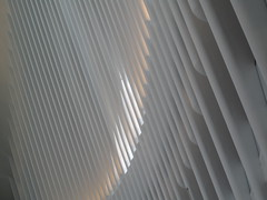 Pattern in the Oculus (ty law) Tags: white bird architecture big wings memorial steel worldtradecenter 911 columns flight marble oculus santiagocalatrava pathtrain grandiose starchitecture easterweekend2016