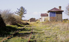 Disused railway station, Milltown, Co Galway (lurcherlad) Tags: ireland abandoned galway overgrown station rural train track country rail railway line disused derelict signalbox cie westerncorridor goodsshed permanentway
