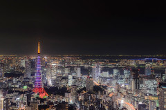 Tokyo at Night (Mart_in_MCR) Tags: city urban building japan architecture buildings landscape asian japanese tokyo asia cityscape horizon capital nighttime human citylights tokyotower roppongi roppongihills cityatnight skydeck jpn urbanlandscape