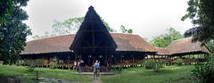 Tambopata Research Center in Peru pano1 5-31-15 (lamsongf) Tags: travel peru southamerica tambopata amazonbasin
