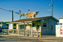 Fishing charter office (rihaje588) Tags: ocean sunset seascape beach pier nc sand marine northcarolina maritime marsh seagrass saltwater shrimpboat