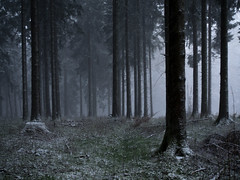Snow in Late April (exilepixel) Tags: snow mountains nature germany spring april taunus