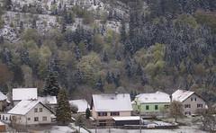 Un matin de printemps.... (mrieffly) Tags: neige canoneos50d geishouse vosgesalsace 100400issriel printemps2016