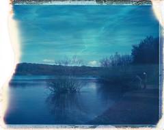 Dog Beach, Ruislip Lido (~ Meredith ~) Tags: blue dog lake beach water polaroid calm 250 lido expiredfilm packfilm ruislip instantfilm type669 filmisnotdead filmwins