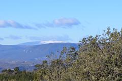 Mont Ventoux (dfromonteil) Tags: mountain montagne luberon vaucluse ventoux