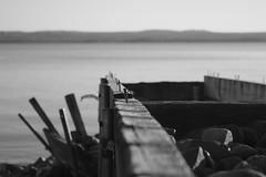 trasig brygga (Broken jetty) (m.rsjoberg) Tags: white lake black broken water monochrome canon sweden jetty 1855mm f56 vatten dalarna outoforder svart siljan sj vit 70d vikarbyn