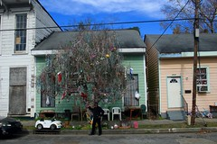 This is Her Tree (assis sur le rebord du monde...) Tags: world road street new trip travel blue sky usa house tree green art home apple colors magazine beads big orleans louisiana couleurs neworleans super dome gras nola easy mardigras backpacker mardi catchy stcharles timberland traveler doux fatthuesday