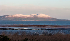 Criffel_with_snow_7837-2 (allybeag) Tags: morning snow ice words seaside frost drawing path patterns numbers cumbria cyclepath criffel hadrians cycleway maryport crosscanonby