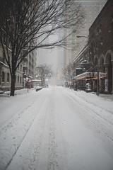 Blizzard of 2016 (arch*templar) Tags: nyc newyorkcity snow manhattan snowstorm timessquare blizzard snowcalypse
