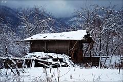Winter House (eminkoyuncu) Tags: winter snow nature
