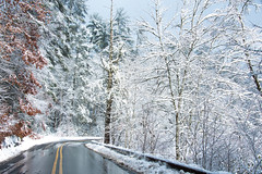 Winter Wonderland (Jon Ariel) Tags: snow cullasaja northcarolina winter us64 trees e