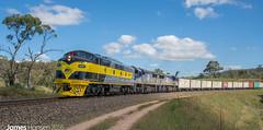 GM27-VL-VL on 8146 at Sodwalls (vicrailways) Tags: rydal au australia newsouthwales