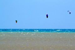 10_02_2016 (playkite) Tags: kite big day egypt kiteboarding kitesurfing kiting elgouna          kitelessons  kiteinhurghada