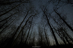 Midnight Hikes (Canning87) Tags: travel trees canada cars canon stars island astrophotography alberta elk wilderness